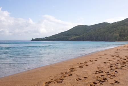 grande: Beach of Grande Anse in Deshaies, Guadeloupe