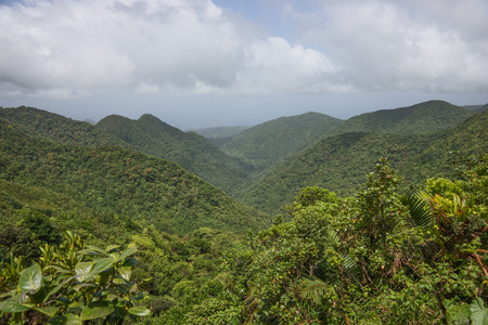 dominica: Rainforest and mountains on Caribbean island of Dominica