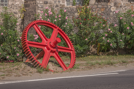 dientes sucios: Red gear in front of a wall with flowers