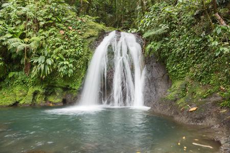 rainforest: Beautiful waterfall in a rainforest. Cascades aux Ecrevisses, Guadeloupe, Caribbean Islands Stock Photo