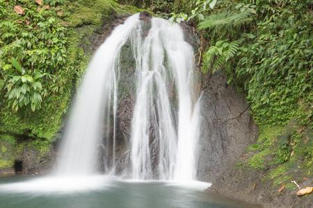 Beautiful waterfall in a rainforest. Cascades aux Ecrevisses, Guadeloupe, Caribbean Islands 写真素材