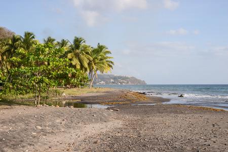 dominica: Tropical beach on Dominica, Caribbean Sea
