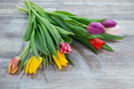 tulip: Fresh colorful tulip flowers bouquet on wooden table. Natural spring or Valentines Day, Mothers Day theme Stock Photo