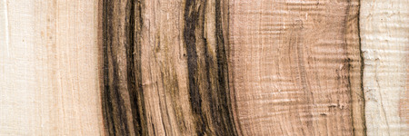 untreated: Untreated wood structure