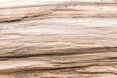 untreated: Untreated wood structure as background Stock Photo
