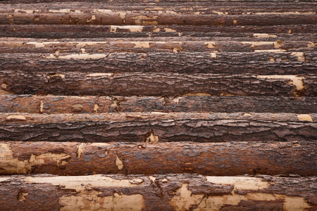 Wood timber pile, wooden lumber as background 写真素材