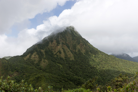 Cloudy day in the rain forest of Dominica