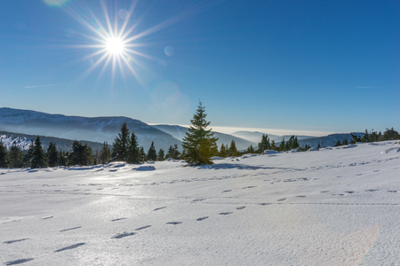Sun shining with lens flare over snow covered Giant mountains, Czech Republic