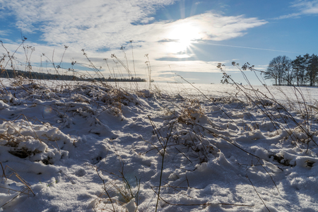 snowy field: Sky with clouds and sun over the snowy field Stock Photo