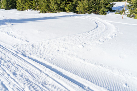 track marks: Snowmobile track marks on the snow in the forest Stock Photo