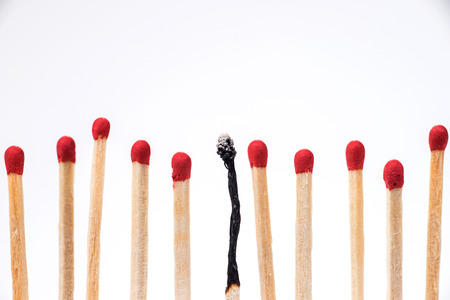 Burnt match between new matchsticks, shallow depth of field Stockfoto