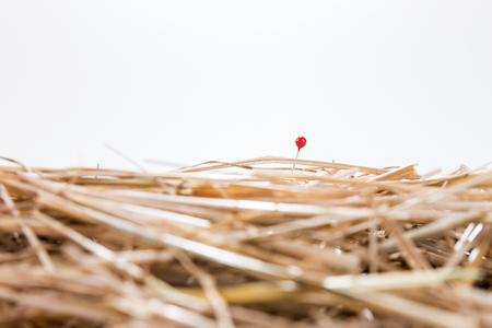 unsolvable: Red needle is in the haystack. challenge and search Stock Photo