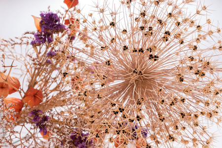 Closeup bouquet of dried flowers as background Stock Photo