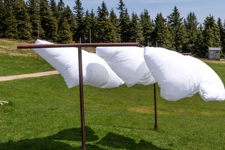 Bed sheet drying in the wind with forest in the background 免版税图像