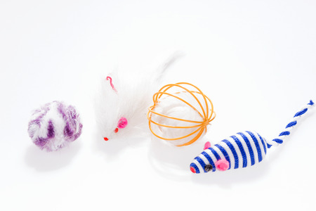Various colorful cat toy isolated on white