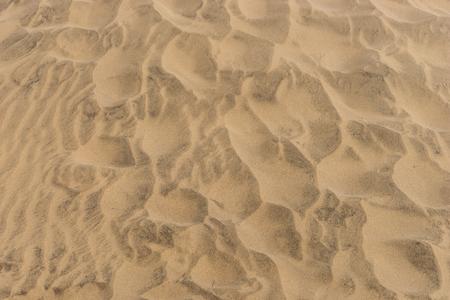Brown sandy beach for background. Sand beach texture