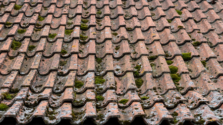 Old roof made of brick covered with green moss Stock Photo