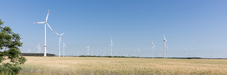 Wind energy turbines behind a cornfield under blue sky