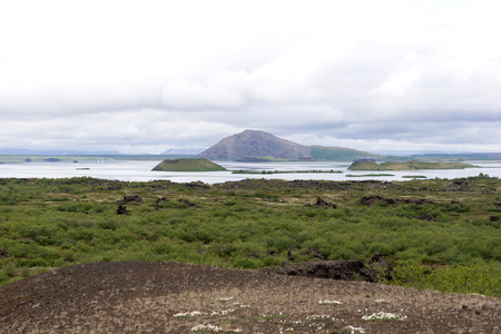 View of Lake Myvatn with various volcanic rock formations in Iceland