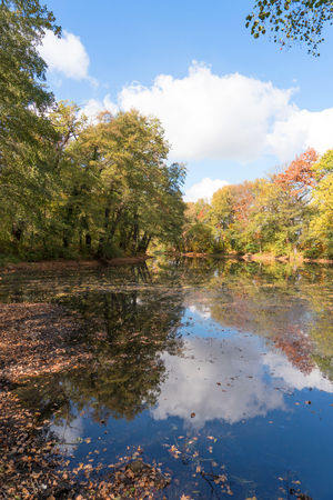 Autumn landscape. Reflection of colorful trees in the pond