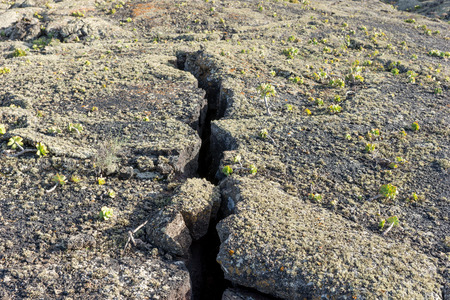 Large crack in the lava earth. Lanzarote. Canary Islands. spain