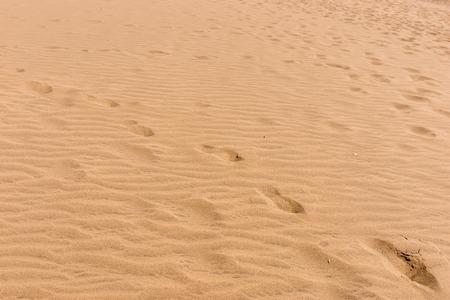Sandy beach for background. Sand on the beach