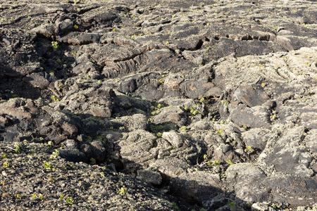 Surface of frozen lava. Frozen lava background