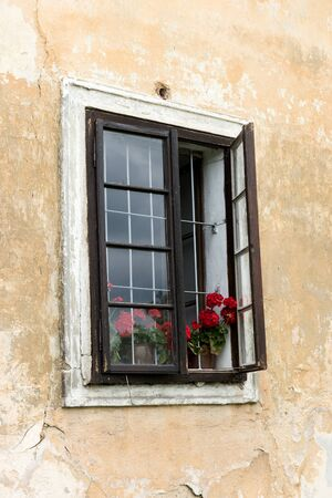 Half-open window with flowers of an old building