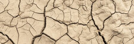 Panoramic image of the dry earth. Global warming concept of cracked ground