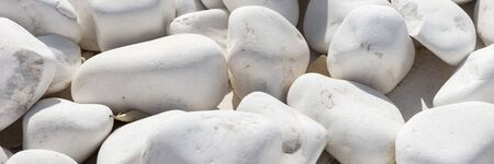 Panoramic background and texture of many white round stones