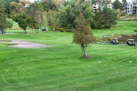 Two golf carts on the manicured golf course