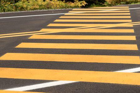 Pedestrian crossing. Yellow stripes on the dark street