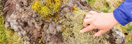 Female hand touches on stone with green moss