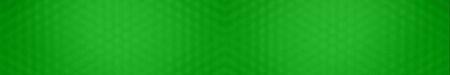Big panoramic blurred green background, panoramic green texture