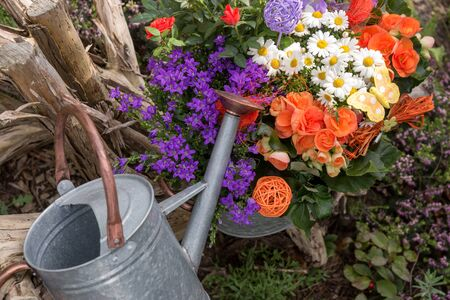 Flower arrangement with an old tin can in the garden