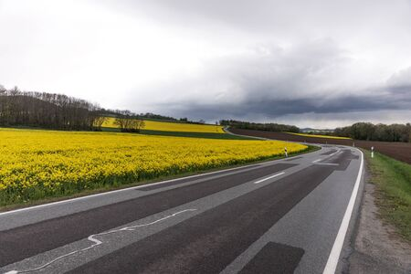 Flowering rapeseed field next to a winding road in the mountains with dramatic clouds in the background