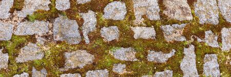 Panoramic image. Cobblestone pavement with moss. Stone texture background