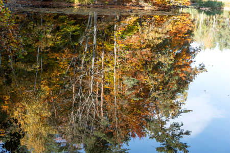 Colorful autumn forest is reflected in the water 版權商用圖片