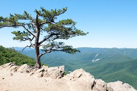 overlook: Ravens Roost Overlook, Blue Ridge Parkway Mountains Stock Photo