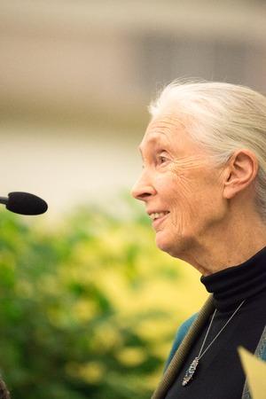 pa: Rosemont, PA - September 15: Dr. Jane Goodall speaks at The Agnes Irwin School in Rosemont on September 15, 2015