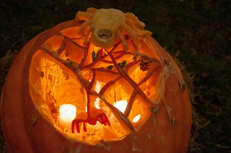 CHADDS FORD, PA - OCTOBER 26: Spider Pumpkin at The Great Pumpkin Carve carving contest on October 26, 2013 Editöryel