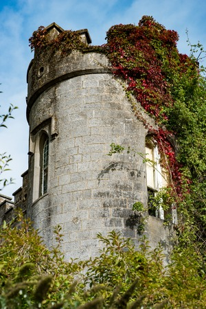 COUNTY OFFALY, IRELAND - AUGUST 23, 2017: Birr Castle in County Offaly, Ireland