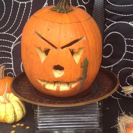 lizzard: Fall Pumpkin Stock Photo