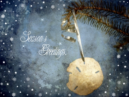 sand dollar: Vintage antique textured Christmas card design featuring a beautiful sand dollar hanging from a pine branch with whimsical designs