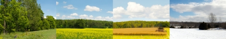 Interesting and unique panorama with the same canola field in spring, summer, autumn, and winter