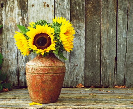 vase color: Colorful, high contrast and highly defined vintage style image of a rustic vase with beautiful sunflowers in the partial shade on a rustic, grunge background with copy space