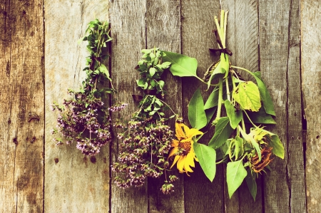 High contrast vintage style image of bundles of herbs and sunflowers hung to dry against a rustic barn board background   Stock Photo