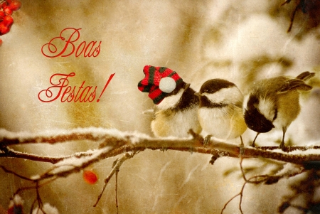 vintage: Vintage Christmas card with adorable chickadees in the snow with Portuguese language text-Boas Festas