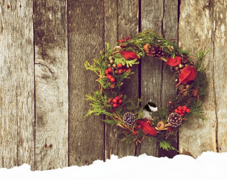 Christmas wreath with natural decorations and a cute little chickadee peeking out hanging on a rustic wooden wall with copy space