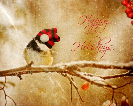 Vintage Christmas card with an adorable chickadee in the snow with text-Happy Holidays  Stock Photo - 16482197